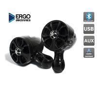 """Мотоакустика Ergo ER600M (встроенный усилитель, 4"""" Hi-Fi динамики 2 шт. 2х100 Вт.) черный"""